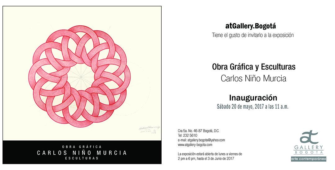 Fascinación por la geometría. Carlos Niño Murcia
